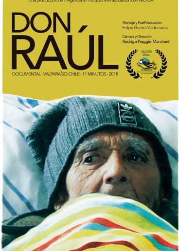 Don Raúl