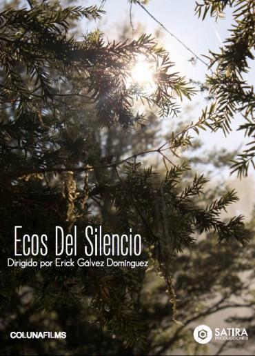 Ecos del silencio
