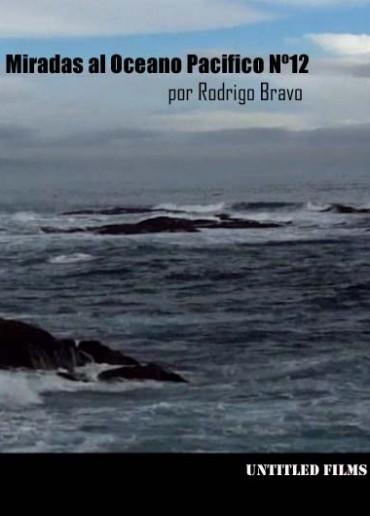 Miradas al Oceano Pacifico Nº12