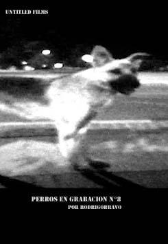 Perros en grabación Nº8