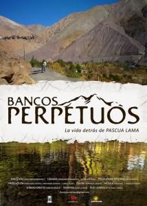 Bancos perpetuos: la vida detrás de Pascua Lama