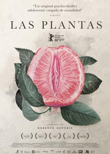 Las plantas