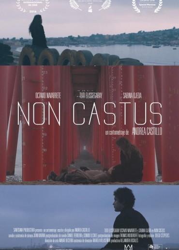 Non castus