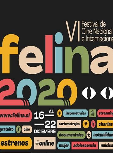 VI Festival de cine nacional e internacional de Linares Felina